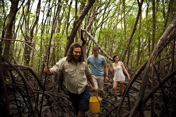 Abenteuer-Australien-Wanderung