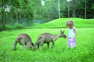 Demi Pair Australien