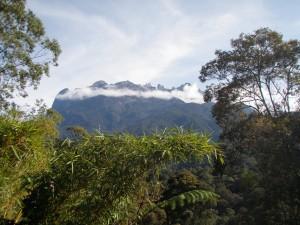 Auslandaufenthalt Borneo