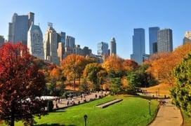 Blog Central Park
