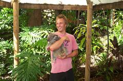 Koala_Reservat_Freiwilligenarbeit_Australien