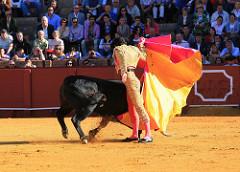 Sprachreise Sevilla
