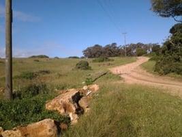 Suedafrika-Park