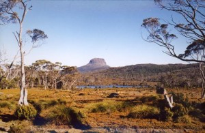 tasmanien2