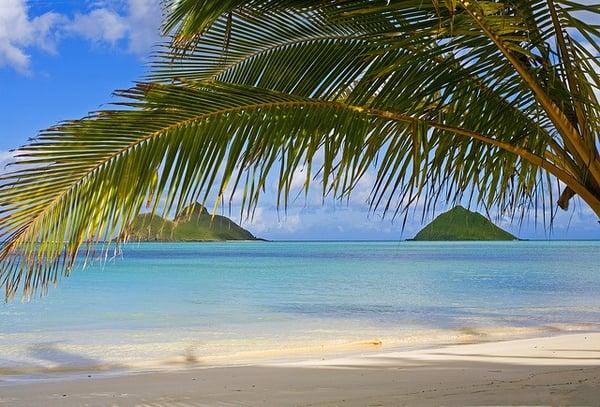 Tipps-Hawaii