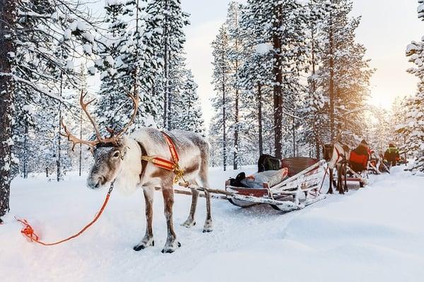beste-weihnachtliche-Reiseziele-Welt