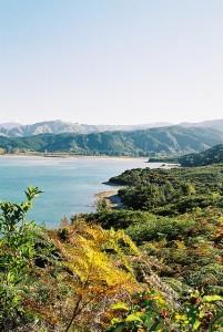 Sprachaufenthalt in Neuseeland mit Reisen verbinden