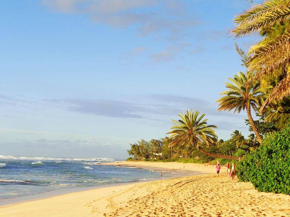 Ein Sprachaufenthalt im Aloha State…