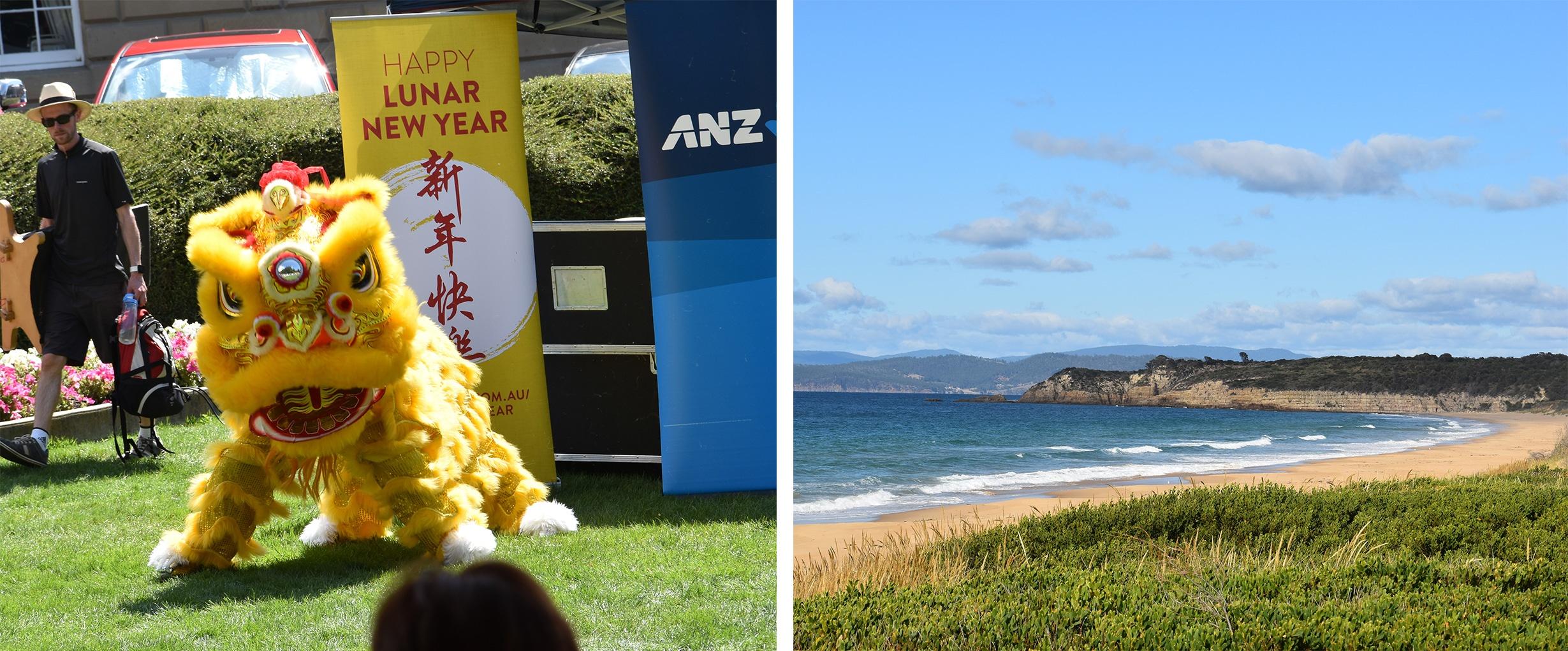 Freiwilligeneinsatz in Hobart, Tasmanien - Teil 2