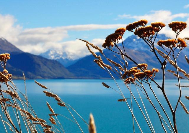 Neuseeland: Auckland oder Nelson, lebendig oder ruhig?