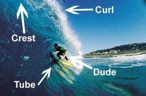 Surfer Slang
