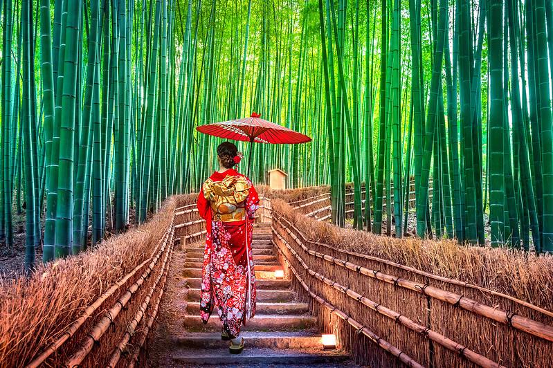 Sprachaufenthalt Asien - unsere neuen Destinationen