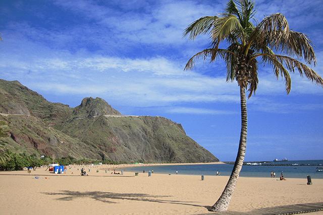 Paradies unter Palmen - Spanisch lernen in Teneriffa | Erfahrungsbericht